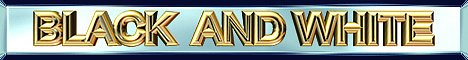 Banniere-BW-08.jpg